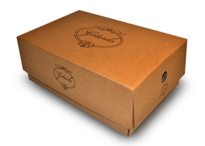 packaging-gotardo
